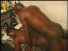 Black Gay  XXX Tube