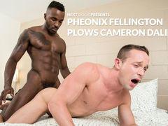 Black Gay Tube Videos